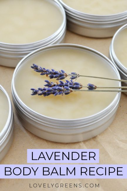 Easy recipe and instructions for making natural lavender body balm. Recipe includes shea butter, beeswax, and pure lavender essential oil #lavenderrecipe #diyskincare #bodybalmrecipe #essentialoilrecipe #beeswaxrecipe #lavenderessentialoil