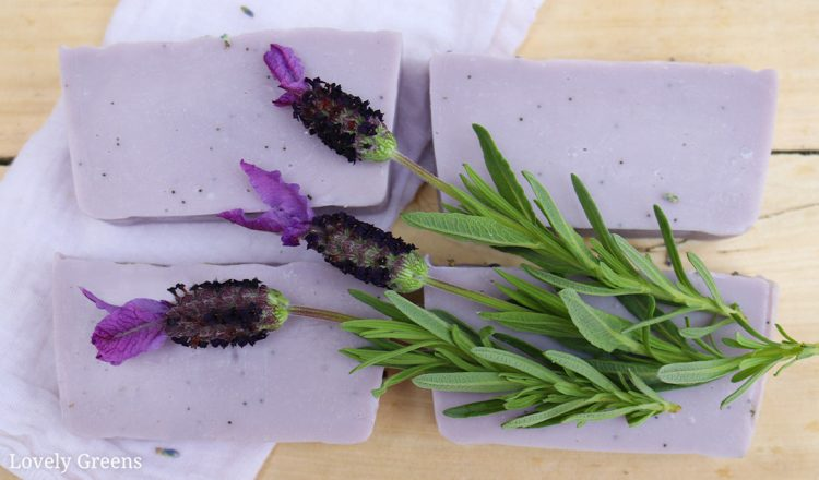 Poppy Seed & Lavender Soap Recipe
