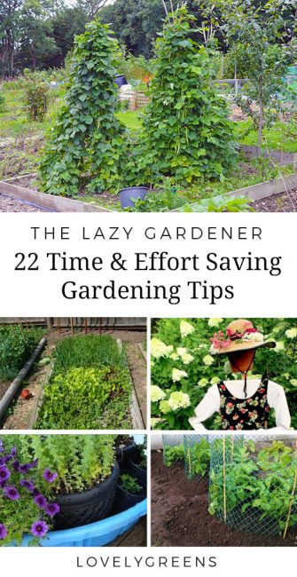 How to be a Lazy Gardener: 22 Tips to save time, effort, and money in the garden