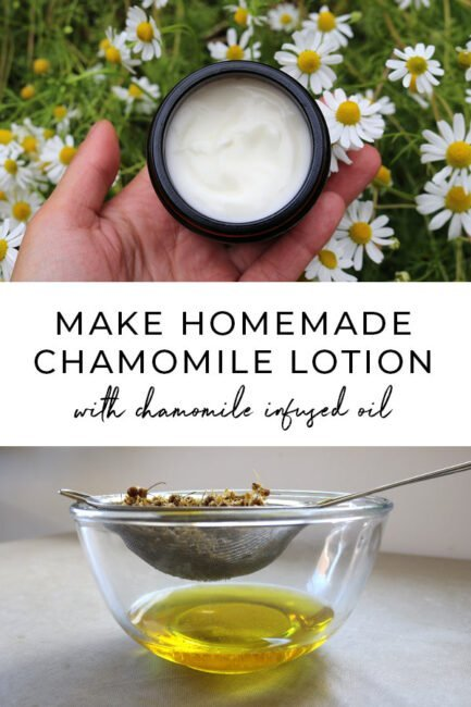 DIY homemade chamomile lotion recipe using simple chamomile infused oil. A simple DIY skincare recipe for normal to sensitive skin #diybeauty #naturalskincare #herbalism