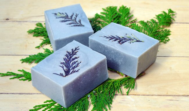 soft blue soap embedded with a dark blue sprig of cedar leaves
