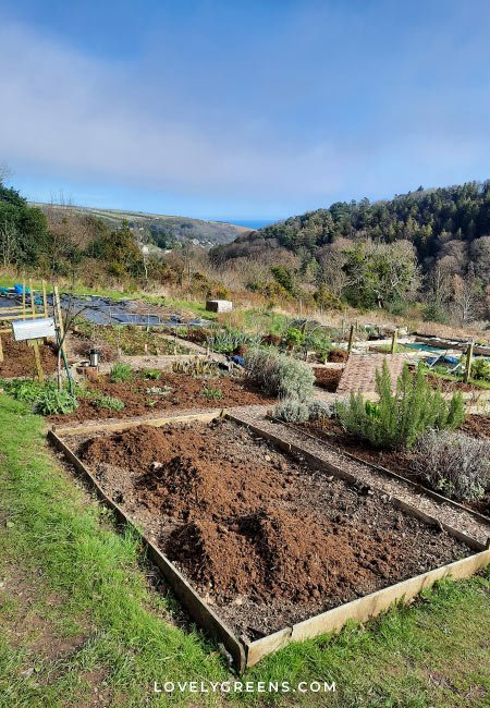 March garden jobs including seeds to sow, crops to harvest, garden projects, and early spring tasks for the vegetable garden #gardeningtips #vegetablegarden #gardenideas