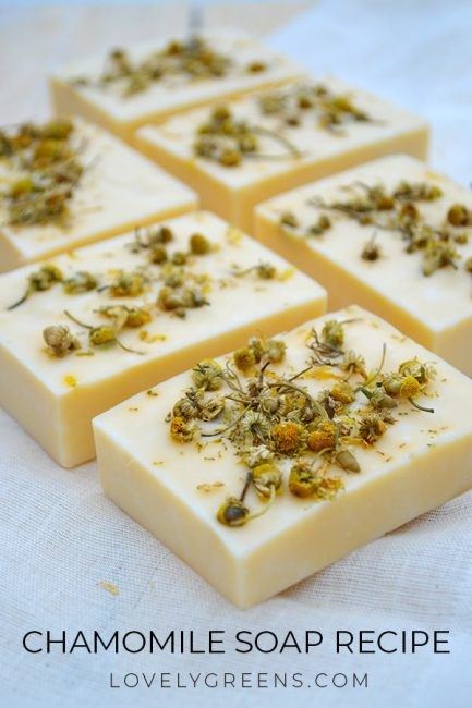 Natural chamomile soap recipe made with essential oil, chamomile flowers, and naturally colored yellow using annatto seeds #soapmaking #coldprocesssoap #soaprecipe #chamomile #handmadesoap #makesoap #naturallycolorsoap #herbalsoap