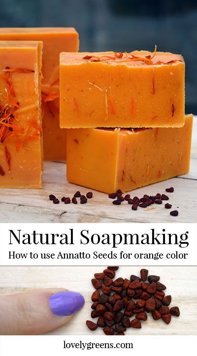 How to make natural orange colored soap using annatto seeds #soapmaking #soaprecipe #makesoap #naturallycolorsoap #coldprocesssoap #annatto #orangesoap