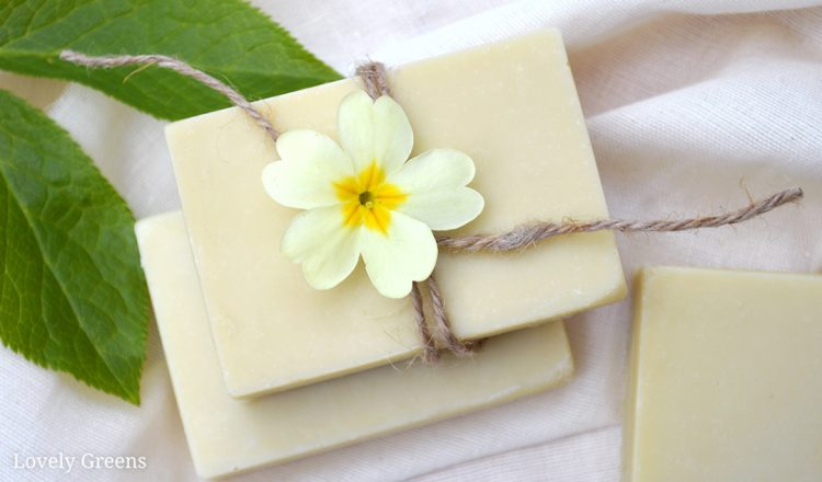 Neem oil soap recipe: a Natural Soap for Eczema