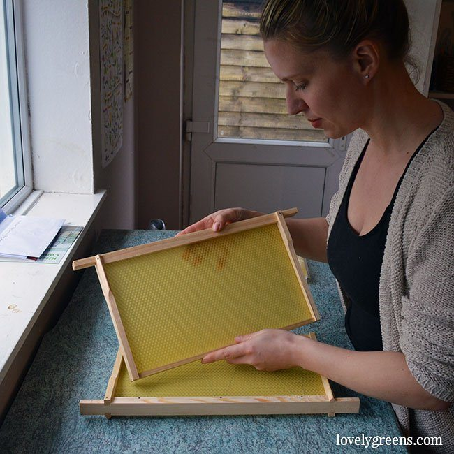 The Honeybees in April: swapping frames using the Bailey Comb Change
