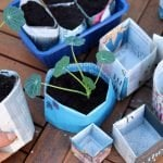 Two ways that you can make newspaper plant pots. One method gives you round pots in less than 30-seconds and the other makes square origami plant pots. Use either for starting seeds, or growing small plants in. Full instructional video included #lovelygreens #diygarden #gardeningtips