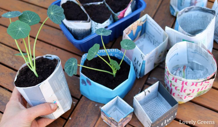 Two ways to make Newspaper Plant Pots: the quick way and the origami method