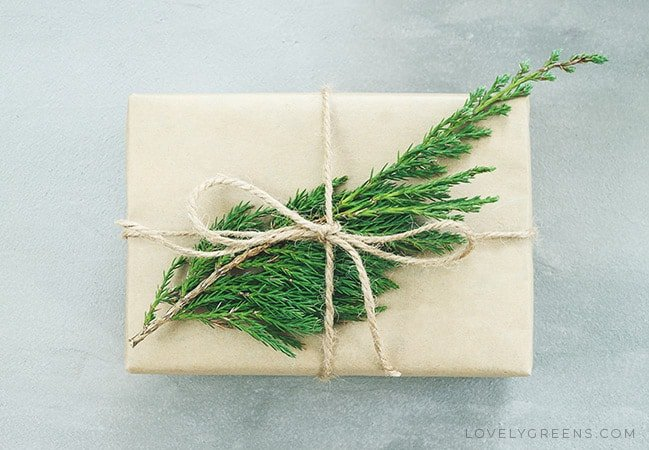 Soap wrapped in soft brown paper and decorated with natural twine and a sprig of evergreen leaves