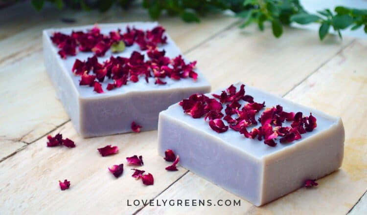 Make Natural Purple Soap with Alkanet Root