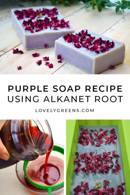 Learn how to make natural purple soap with with alkanet root, scented essential oil, and organic rose petals for decoration #soaprecipe #soapmaking