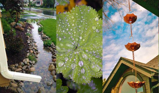 20+ Rainy Garden Ideas & Projects