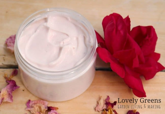 Recipe + instructions for making Rose Petal Body Cream. Made with fresh flowers, rich oils, and beautifully scented essential oil. A body cream that tones and smooths while plumping the skin #lovelygreens #beautydiy #diybeauty #roserecipe #lotionrecipe #bblogger #selfsufficient