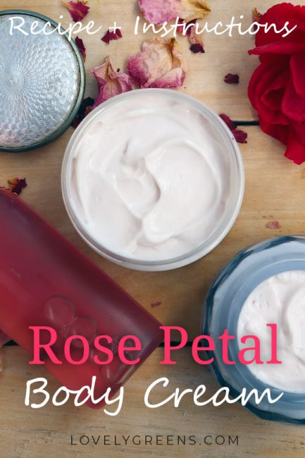 Recipe + instructions for making Rose Petal Body Cream. Made with fresh flowers, rich oils, and beautifully scented essential oil. A body cream that tones and smooths while plumping the skin #lovelygreens #beautydiy #essentialoilrecipe #naturalskincare #diybeauty #roserecipe #lotionrecipe #bblogger #selfsufficient