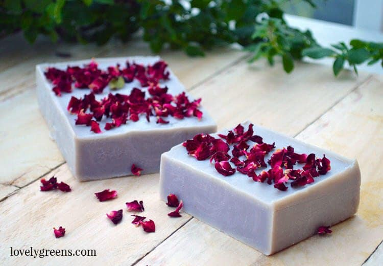 Natural Rose Geranium Soap Recipe using alkanet root for natural purple color, essential oils, and dried rose petals for decoration #lovelygreens #soapmaking #soaprecipe