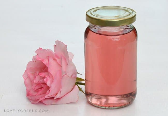 Instructions on how to make rose water toner using fresh rose petals. Use directly on your skin as a natural toner or blend it with oils to create creams and lotions #lovelygreens #roserecipe #roseskincare #diyskincare #rosewater #diybeauty