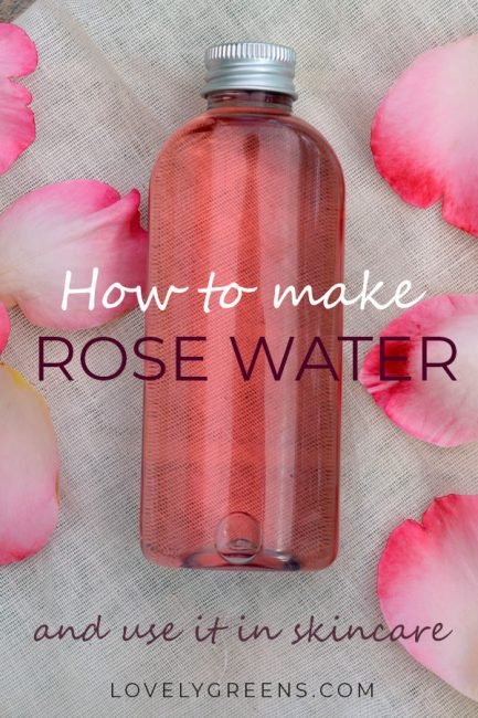 Instructions on how to make rose water using fresh rose petals. Use directly on your skin as a natural toner or blend it with oils to create creams and lotions #lovelygreens #roserecipe #roseskincare #diyskincare #rosewater #diybeauty