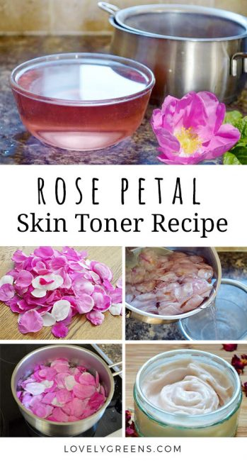 Simple recipe for homemade Rose Water -- use as a gentle face toner or to make handmade lotions and creams #lovelygreens #naturalskincare #roses #roserecipe #diybeauty