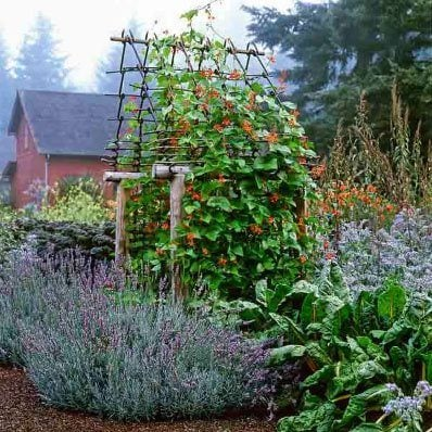 30 Garden Projects Using Sticks Amp Twigs Lovely Greens