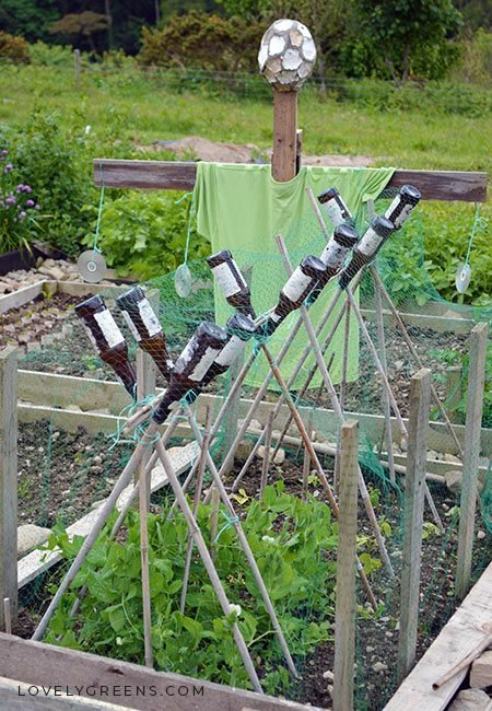 Natural ways to keep birds out of the garden without hurting them. Includes various netting