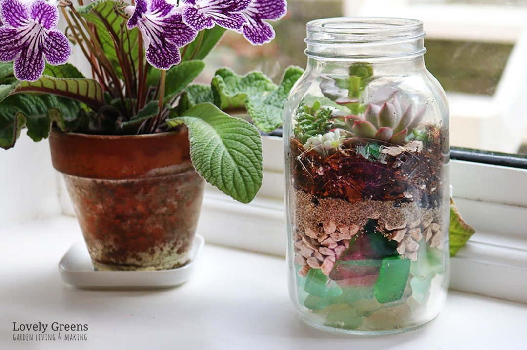 How To Make A Sea Glass Succulent Terrarium Lovely Greens