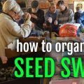 How to Organize a Seed Swap