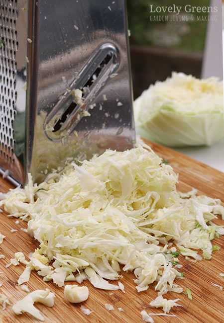 Easy Sauerkraut Recipe using the Bucket and Brick Method #lovelygreens #fermenting #preserving #cabbage #cabbagerecipe #sauerkraut #vegetarian