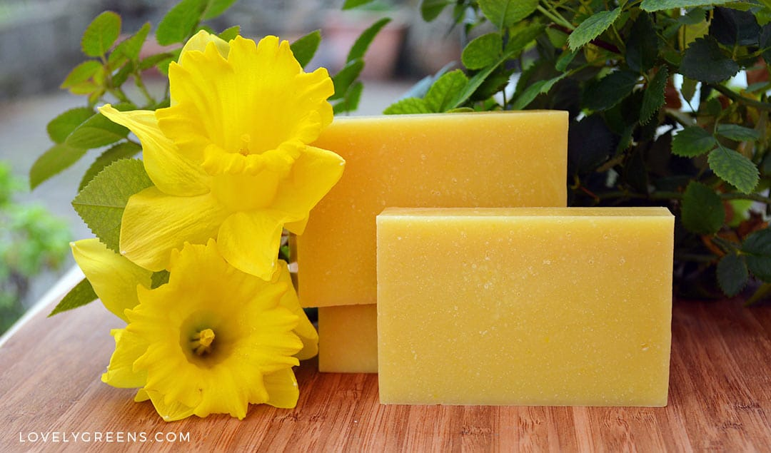 Daffodil Soap Recipe using Real Flowers