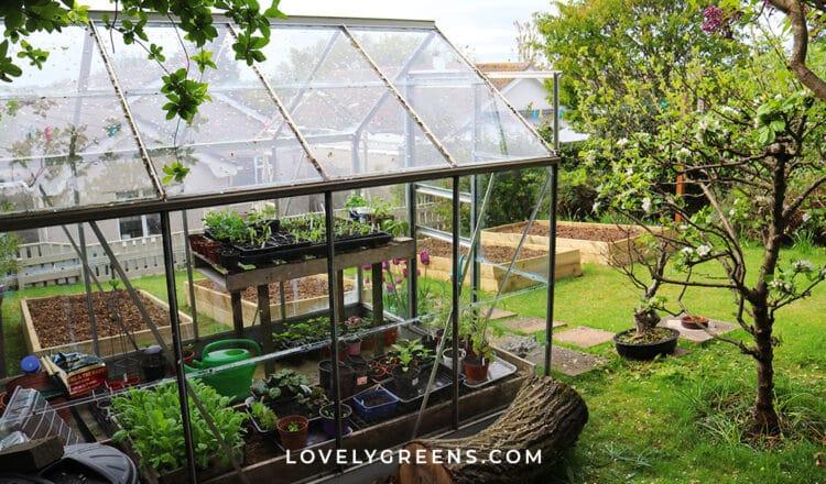 April Garden Jobs for the Vegetable Garden