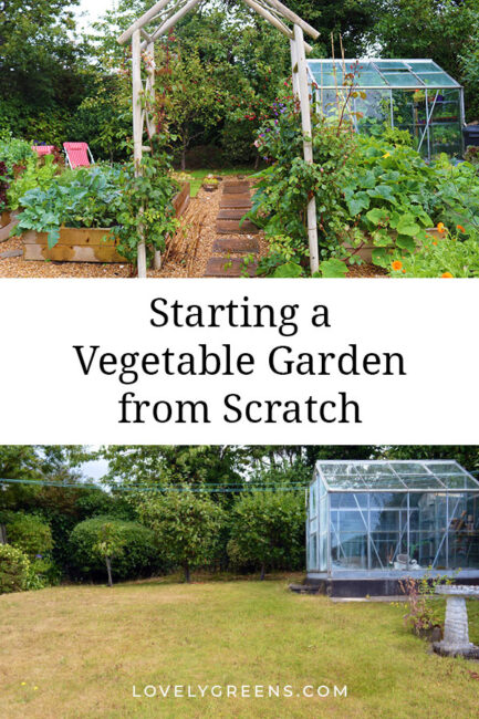 Tips on starting a vegetable garden from scratch including ideas for clearing land, mulching, compost, and amending soil #gardeningtips #vegetablegarden