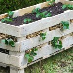 New Video Tutorial: How to Make a Strawberry Pallet Planter