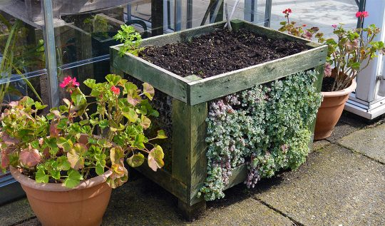 DIY Pallet Planter -- grow edibles on the top and succulents on the sides