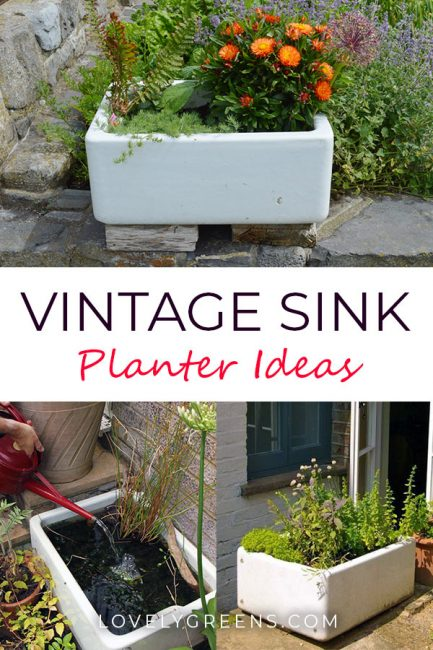 Ideas for growing veg, flowers, and even mini-ponds in Vintage Sink Planters. Includes tips on where to find them and how to plant them up #lovelygreens #containergarden #smallspacegardening