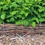 DIY Woven Garden Edging