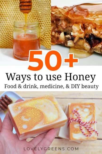 A collection of more than fifty delicious and creative honey recipes. Make everything from desserts and treats to handmade skincare and medicine #honey #honeyrecipe #beekeeping