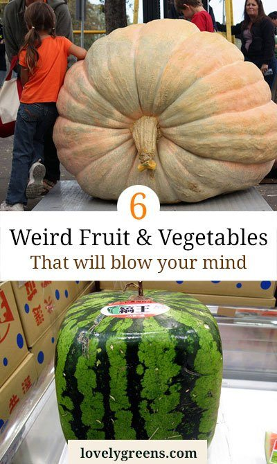 6 Weird Fruit & Vegetables that will Blow your Mind