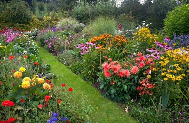 Tips on how to create a wildflower cottage garden from seed, with perennials, or by cultivating wild plants. A planting style that's as beautiful and eco-friendly as it is low-maintenance #cottagegarden #gardeningtips #gardening