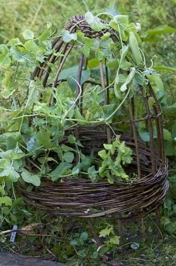 30 Garden Projects Using Sticks Amp Twigs Garden Living