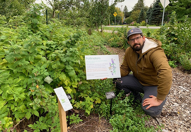 Clever tips for using the way wild ecosystems work to create a self-sustaining and bountiful food garden. This is sustainable garden design at its best and benefits soil, plants, yield, and community #permaculture #gardendesign #organicgarden